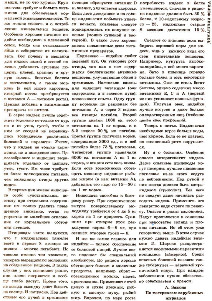 Индюки. Всё о породах и их содержании - Страница 3 Image542