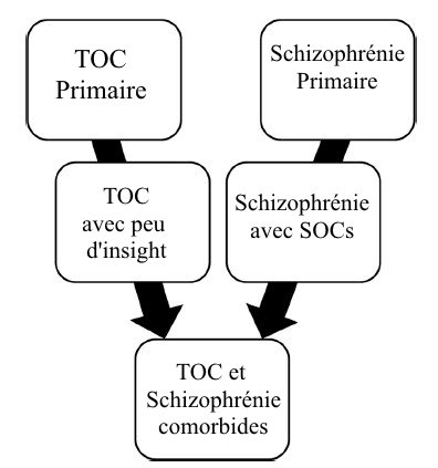 Schizophrénie et SOC TOC comorbidité