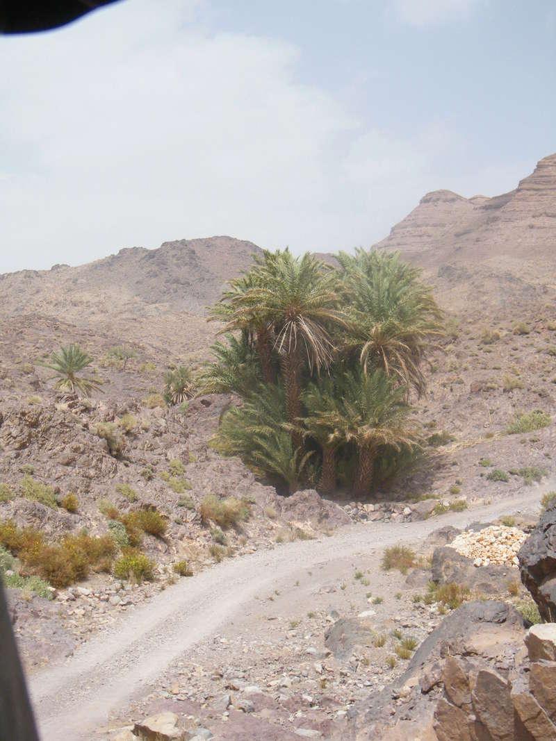 Retour Raid Transargho 2017 by MORAIDS Dscf0312