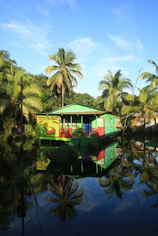 Nature au Costa Rica Img_6513