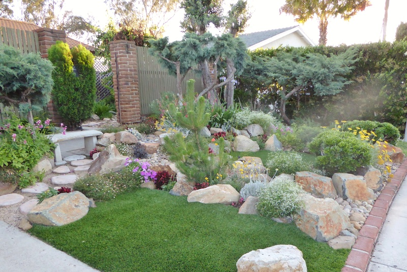 Jimmy's (home of Kohdi and Mishka) Gardening Projects - Page 7 02911