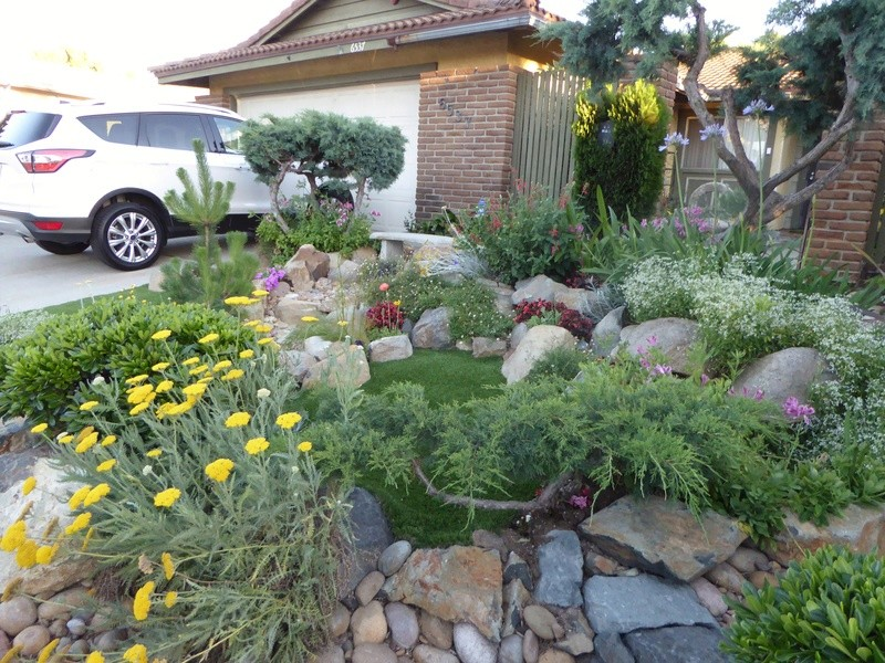 Jimmy's (home of Kohdi and Mishka) Gardening Projects - Page 7 03112