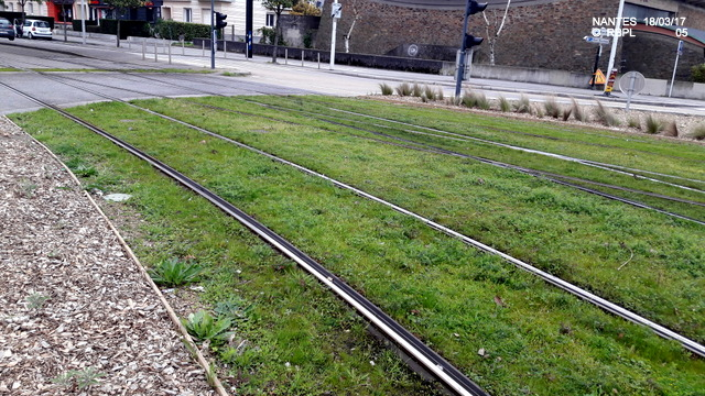 Gare de Rezé Pont-Rousseau [19/03/2017] 20170395