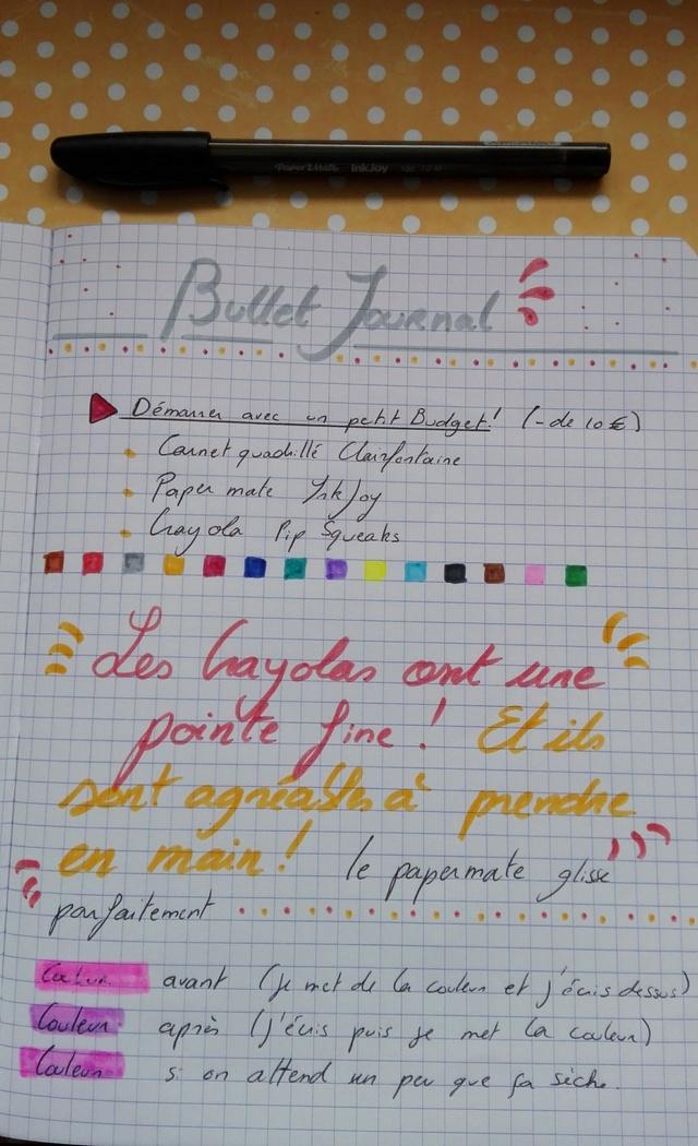 Matériel pour démarrer un BuJo : Petit Budget ! Img_2012