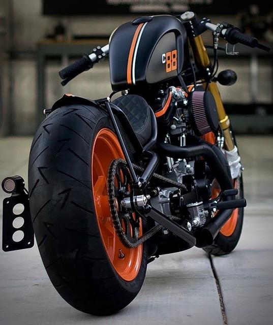 Sportster custom Tumbl494