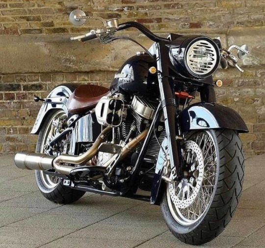 Softail custom Tumbl525
