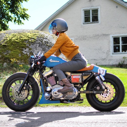 Sportster custom Tumbl559
