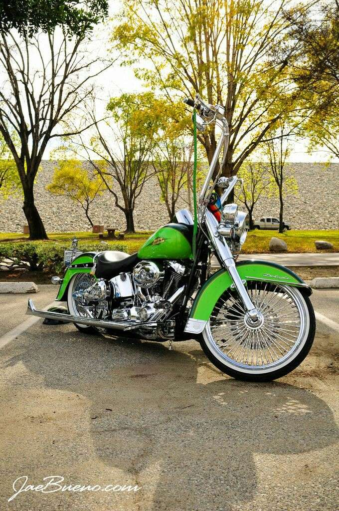 Softail custom Tumbl750