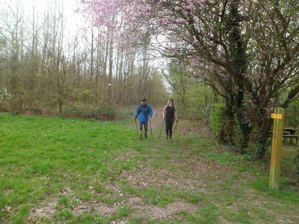 Sortie Annuelle de Lyons la Forêt Sam_4921