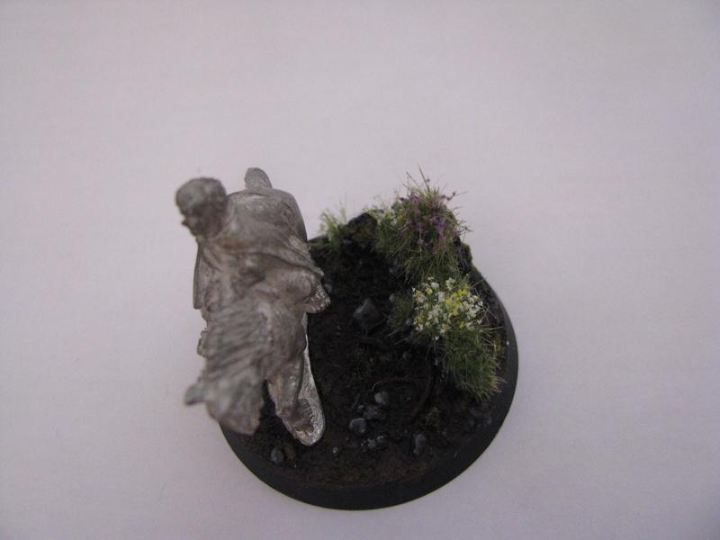 Concours de peinture SDA n°5: La fig dont vous êtes le héros - Page 3 Img_6012