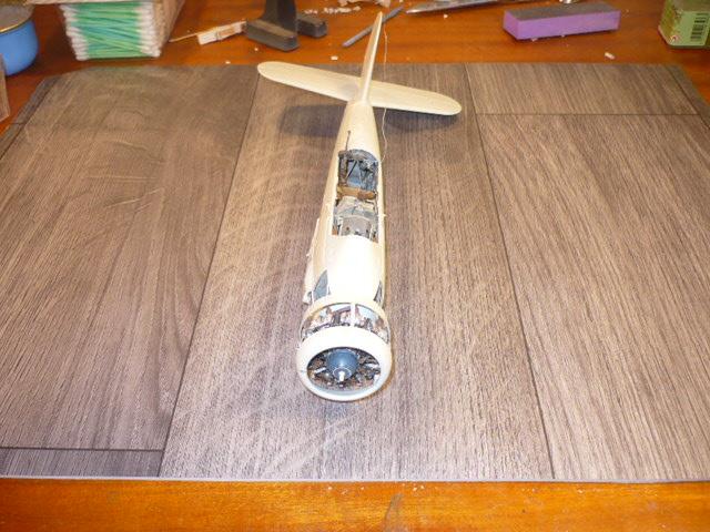 Arado Ar-196 A-3 Revell 32e P1120360