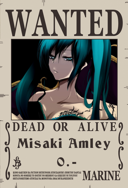One Piece - The Begin Misaki10