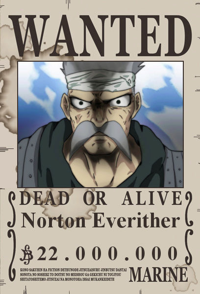 One Piece - The Begin Norton10