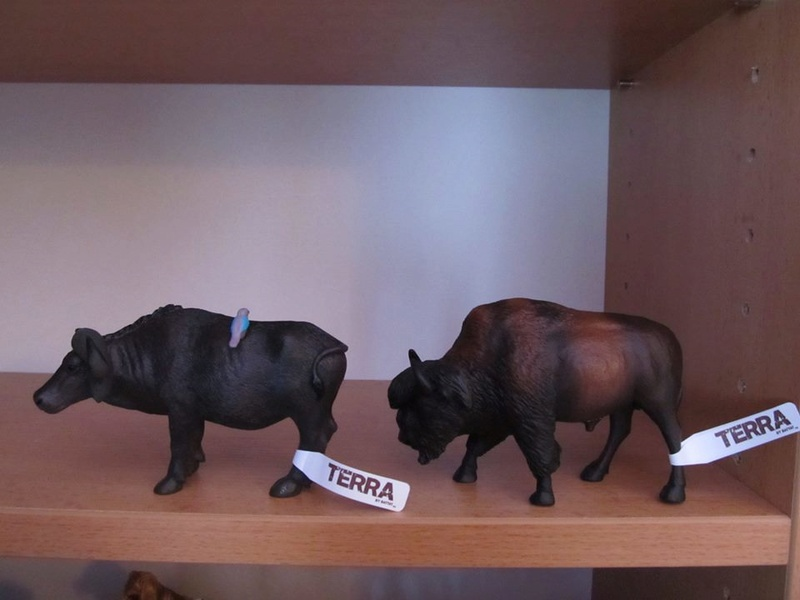 My new Terra Battat Bison and African buffalo. 16681610