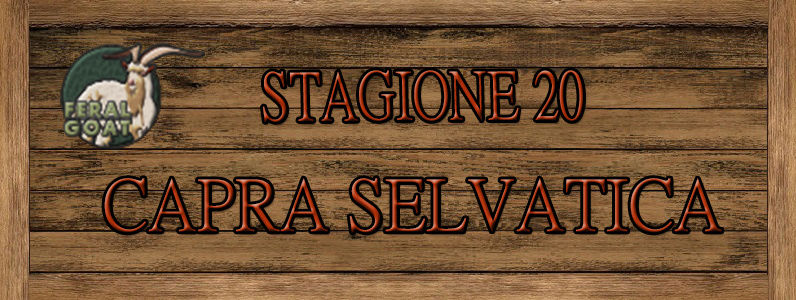 Capra Selvatica - ST. 20 Capra10