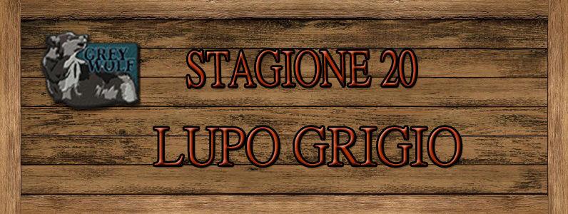 Lupo Grigio - ST. 20 Lupo10