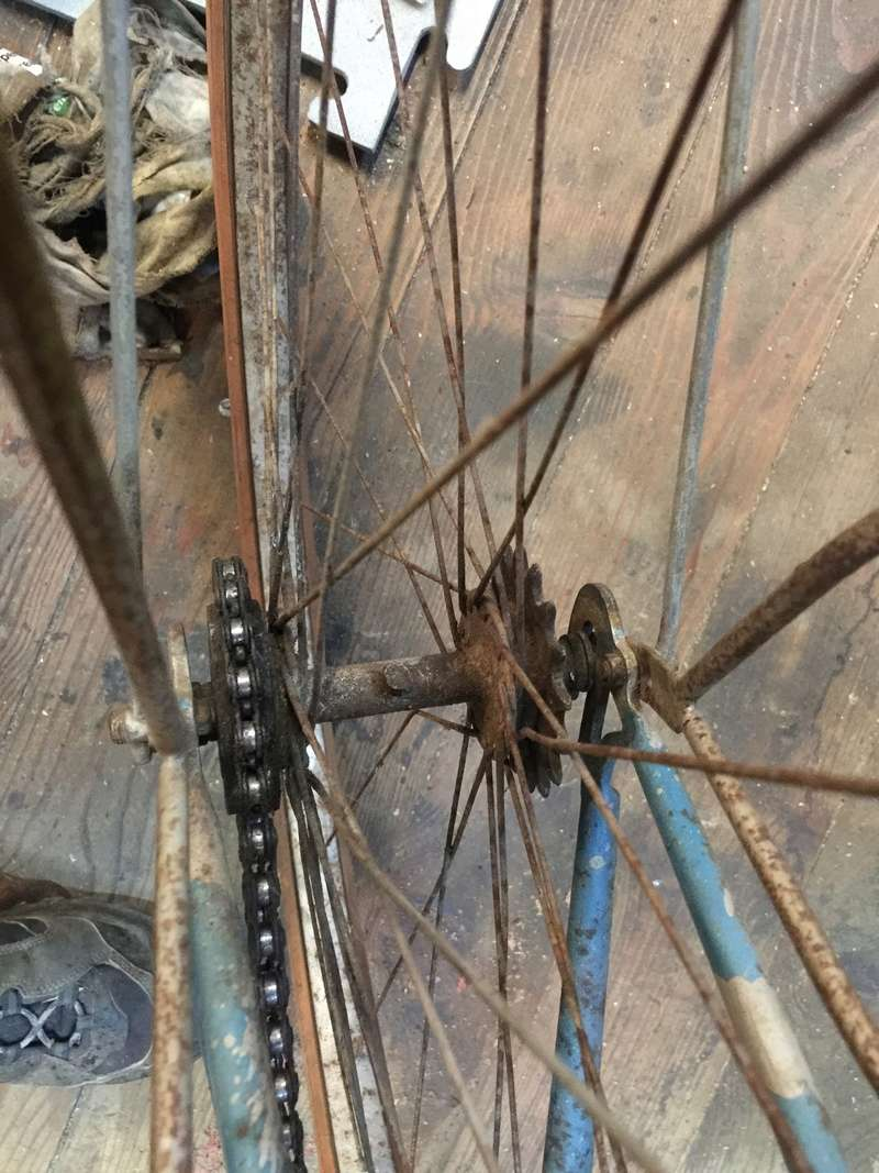 Cycles bietrix Img_0614