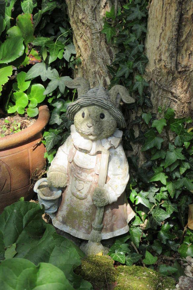Welcome to my garden: hérissonne enceinte ? Img_2922