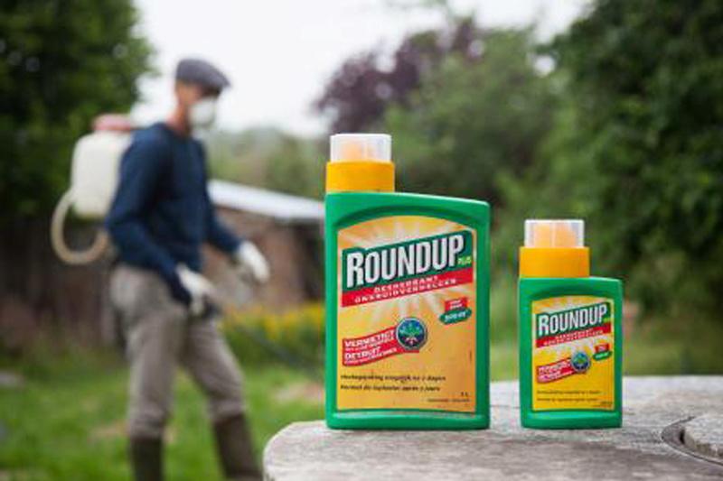 Faire un chasse abeilles avec un nourrisseur Nicot en 10mn- test  Image-10