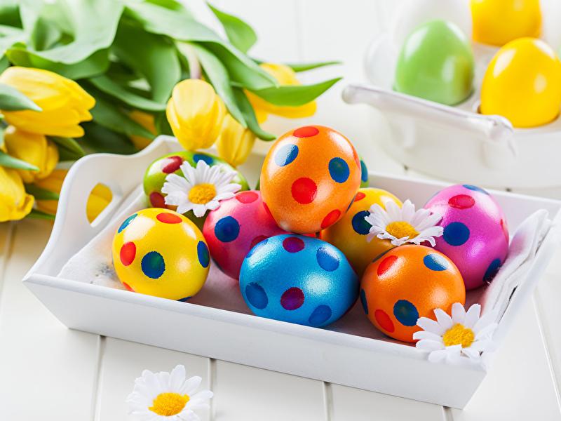 Uskrs ,farbanje i ukrašavanje uskršnjih jaja i ostala dekoracija - Page 10 Holida11