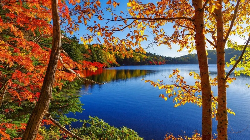More,jezero,reka...plaža,palma... - Page 31 Lakes-12