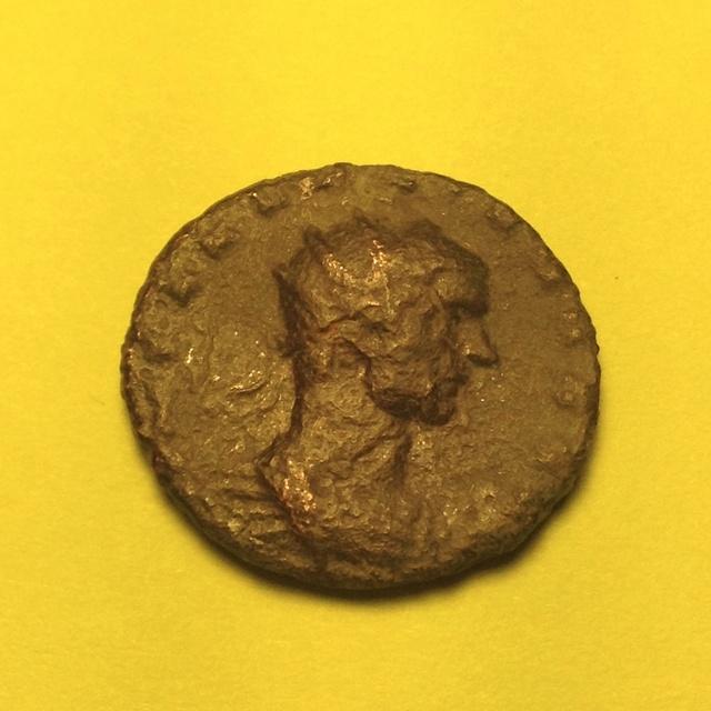 Identification Aurélien Image23