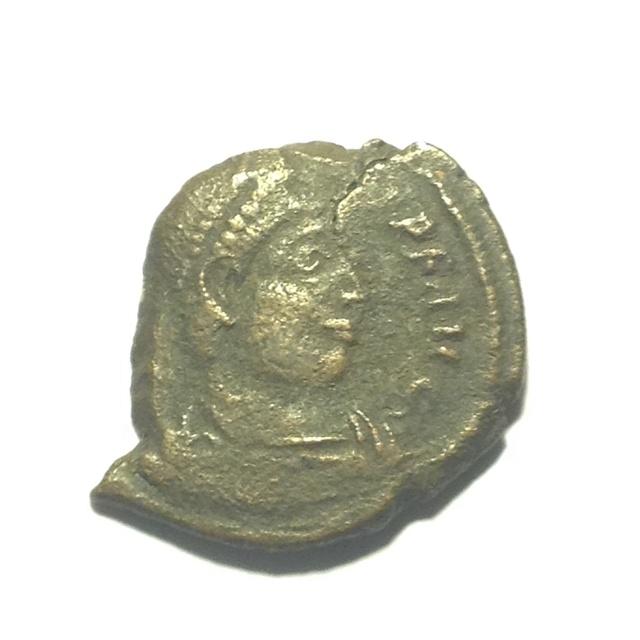 Romaine à id #6 Image65