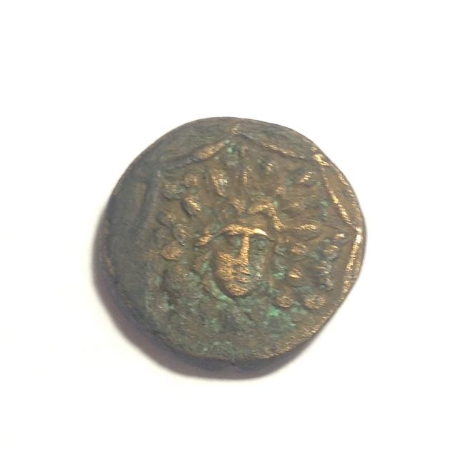 Identification grecque Image72
