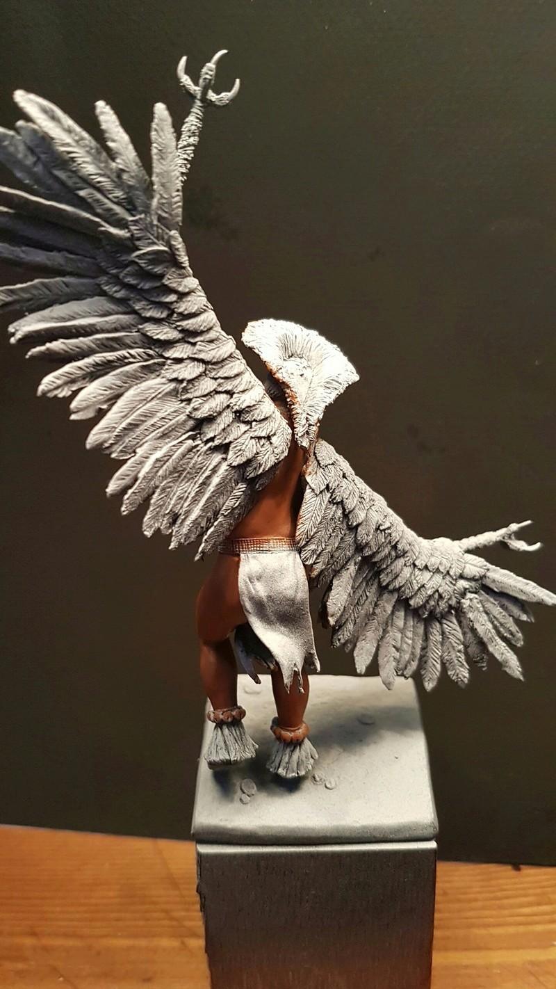 Eagle Dancer  20170396
