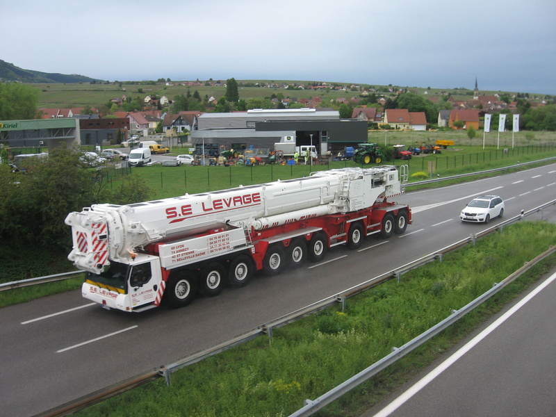 Les grues de S.E. LEVAGE (France) - Page 52 Img_7123