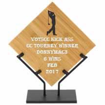 TOP CC WINNERS FEBRUARY 2017 Feb_cc11