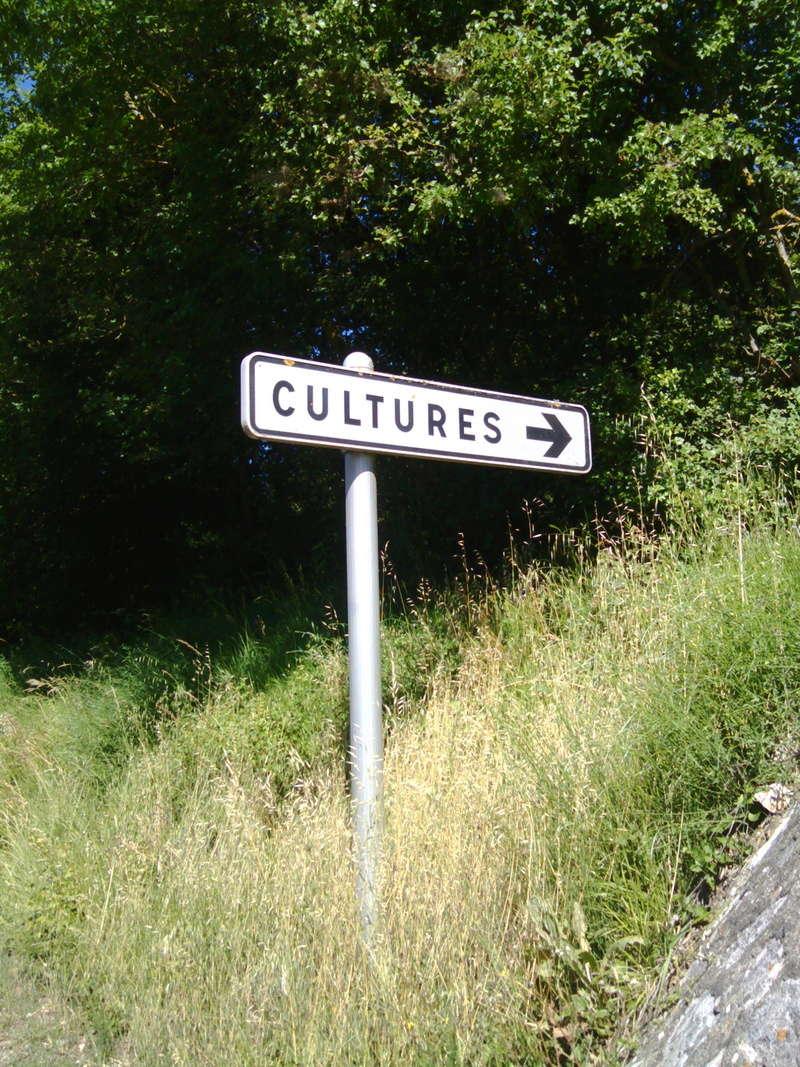 Un petit tour en Lozère. Img_2012