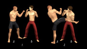 Poses Combats 0822