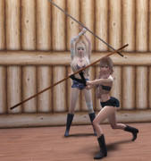 Poses Combats 1221