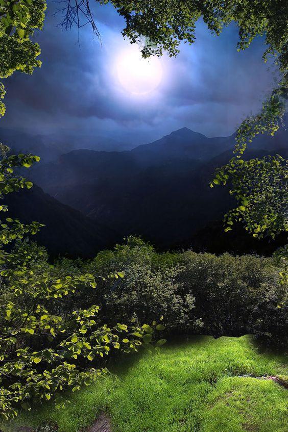 Au clair de Lune - Page 3 35169510