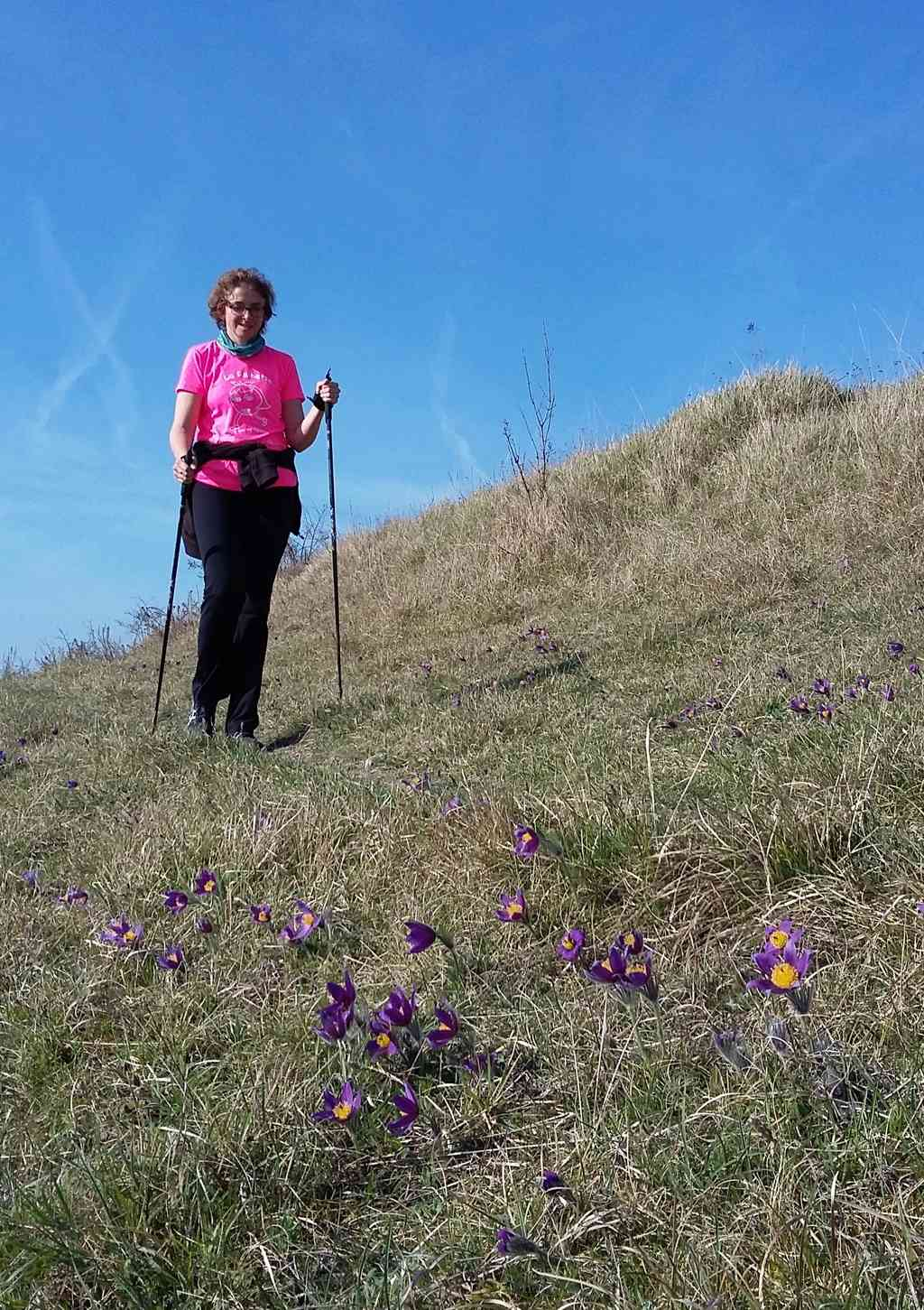 Sur le panorama de Belbeuf lundi et jeudi ensoleillés de ce printemps  03_27_13