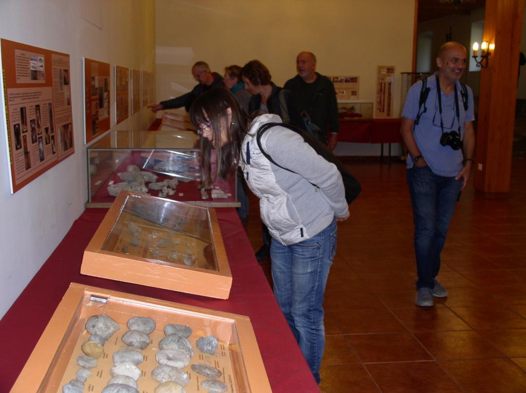 Exposición especies de la transversal pirenaica y algunas cosas más _p101021
