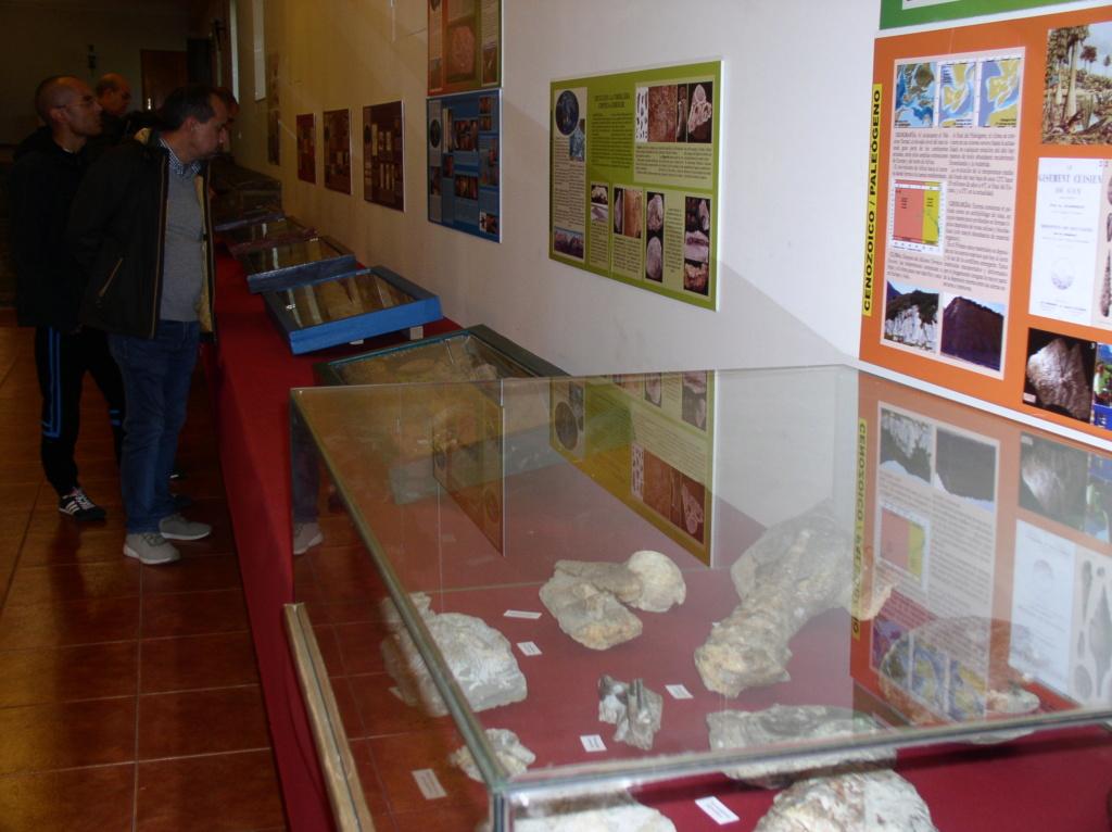 Exposición especies de la transversal pirenaica y algunas cosas más _p101022