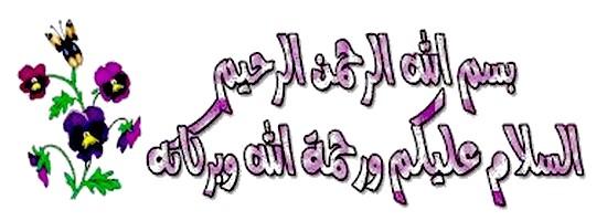 أتعلم العربية والقران 25010