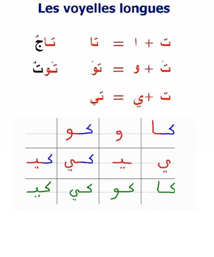 أتعلم العربية والقران Cc211010