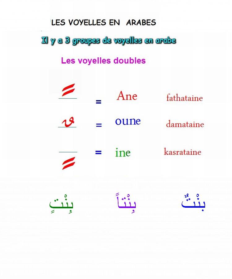أتعلم العربية والقران Cc211110