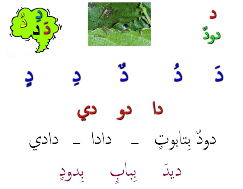 أتعلم العربية والقران Dadi1010