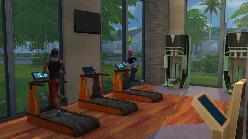 Puny to Powerful TS4Fitness Mini Challenge 06-20-10