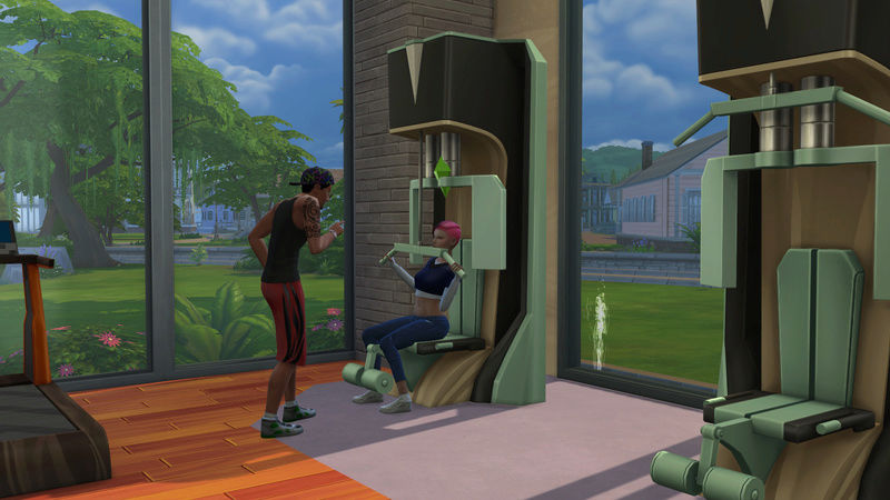 Puny to Powerful TS4Fitness Mini Challenge 06-20-11