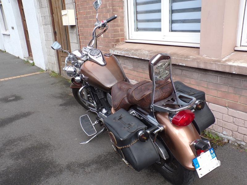 800 VN - 1ère moto pour moi/800VN Classic 101_1015