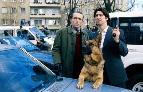 FONT FONT et BEAST : POLICE SPICAENNE 419
