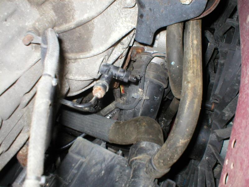 entretien caliber essence - Page 6 P1010217
