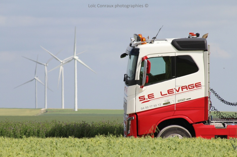 Les grues de S.E. LEVAGE (France) - Page 53 Img_7419