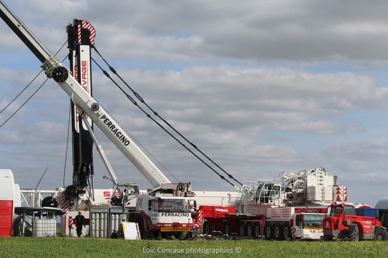 Les grues de S.E. LEVAGE (France) - Page 53 Img_7511