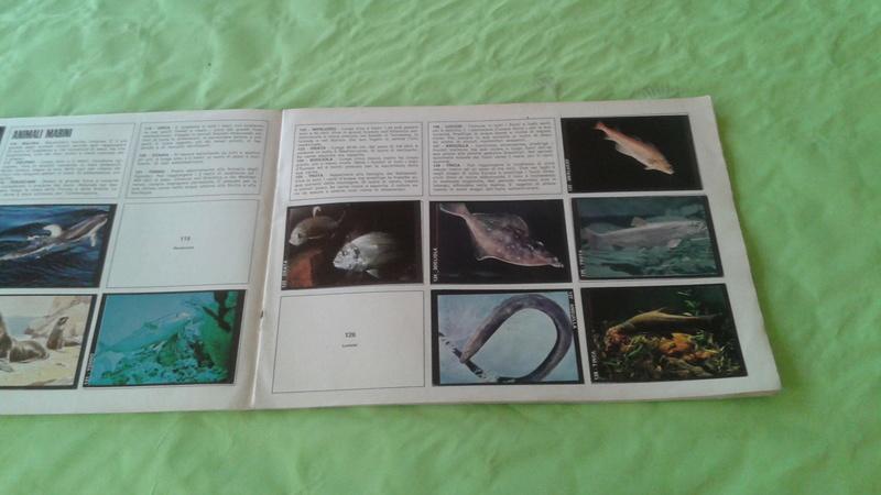 Album Figurine Natura Viva anni 70 20170587